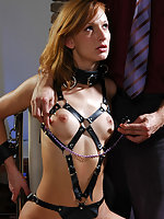 Body harness, ball-gag, clamps amd pegs