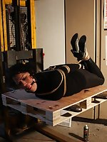 Brunette hogtied, ball-gagged and forklifted